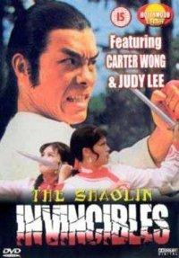 Смотреть Yong zheng ming zhang Shao Lin men онлайн на Кинопод бесплатно