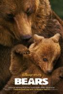Смотреть фильм Медведи онлайн на KinoPod.ru платно
