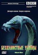 Смотреть фильм BBC: Безжалостные убийцы онлайн на Кинопод бесплатно