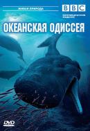 Смотреть фильм BBC: Океанская одиссея онлайн на Кинопод бесплатно