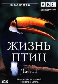 Смотреть онлайн BBC: Жизнь птиц (The Life of Birds)