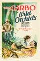Смотреть фильм Дикая орхидея онлайн на Кинопод бесплатно