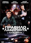Смотреть фильм Правило лабиринта: Плацента онлайн на KinoPod.ru бесплатно