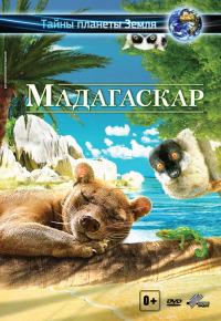 Смотреть Мадагаскар 3D онлайн на Кинопод бесплатно