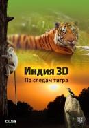 Смотреть фильм Индия 3D: По следам тигра онлайн на Кинопод бесплатно