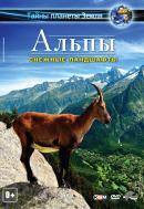 Смотреть фильм Альпы 3D: Снежные ландшафты онлайн на Кинопод бесплатно