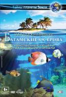 Смотреть фильм Багамские острова 3D: Таинственные пещеры и затонувшие корабли онлайн на Кинопод бесплатно
