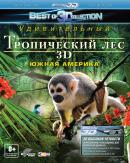 Смотреть фильм Тропический лес 3D онлайн на Кинопод бесплатно