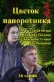 Смотреть фильм Цветок папоротника онлайн на Кинопод бесплатно