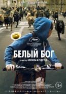 Смотреть фильм Белый Бог онлайн на Кинопод бесплатно