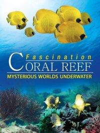 Смотреть Коралловый риф: Удивительные подводные миры онлайн на Кинопод бесплатно