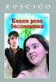 Смотреть фильм Белая роза бессмертия онлайн на Кинопод бесплатно