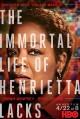 Смотреть фильм Бессмертная жизнь Генриетты Лакс онлайн на Кинопод бесплатно