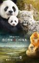 Смотреть фильм Рожденные в Китае онлайн на Кинопод бесплатно